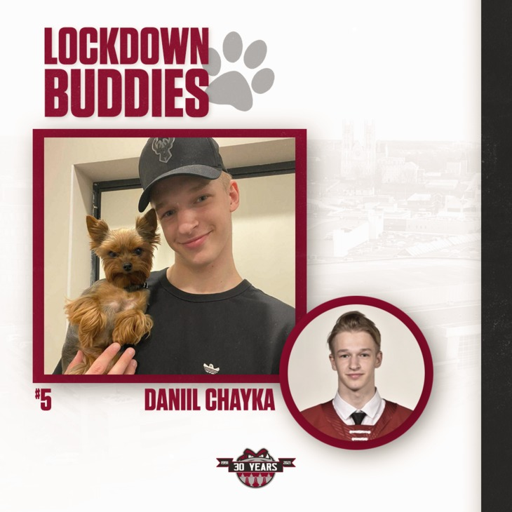 Chayka Lockdown Buddies