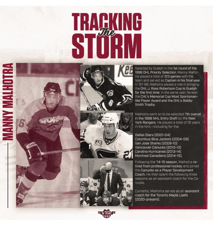 track storm wordpress