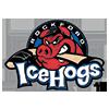 Rockford icehogs American hockey