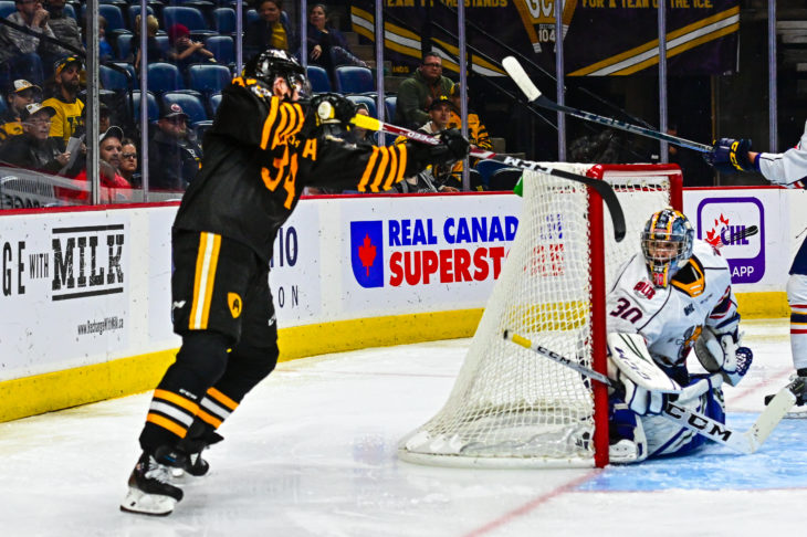 Arthur Kaliyev Tiger Cats Lacrosse Goal