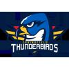 Springfield Thunderbirds Hamilton Bulldogs Riley Stillman