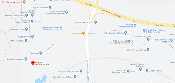Kingston Humane Society 1 Binnington Ct, Kingston, ON K7M 8M9