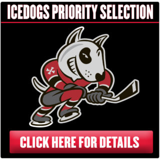 Ticket Page Button - Priority Selection