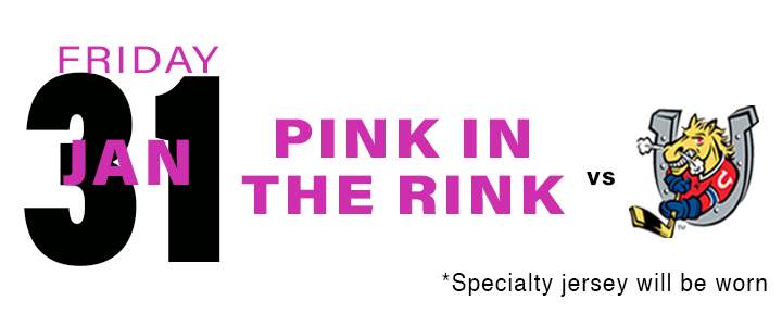 PROMOTIONAL Schedule - Pink in the Rink