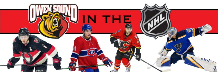 Attack in the NHL Banner 2019