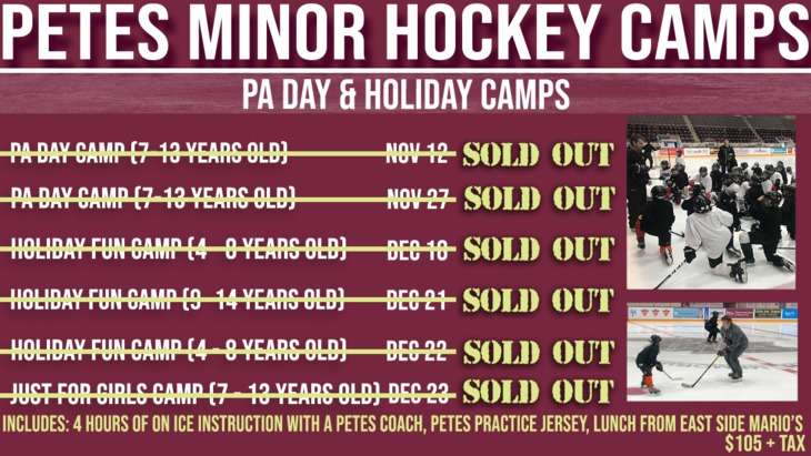 New PA & Holiday Camps (1)