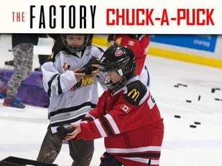 Chuck-A-Puck