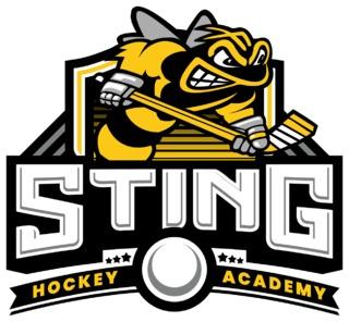 Sting Hockey Academy Logo