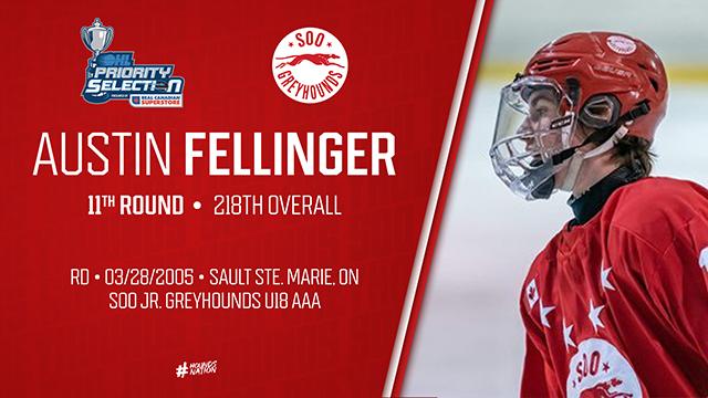 RD11_Fellinger