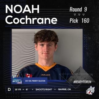 OHL Draft IG(n.cochrane)